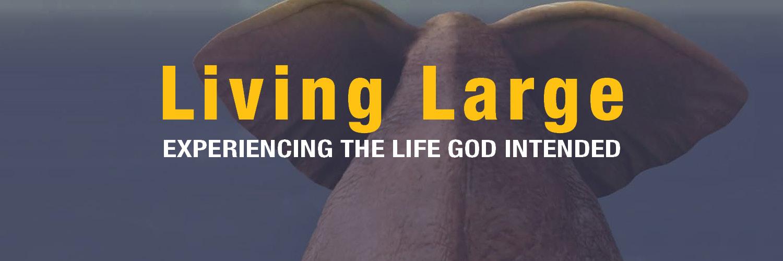 living large-WEB banner2